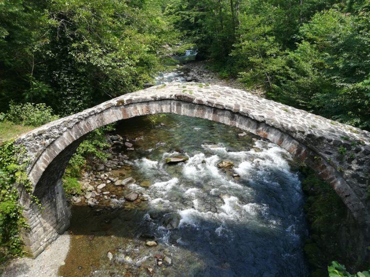 Park Narodowy Kintrishi